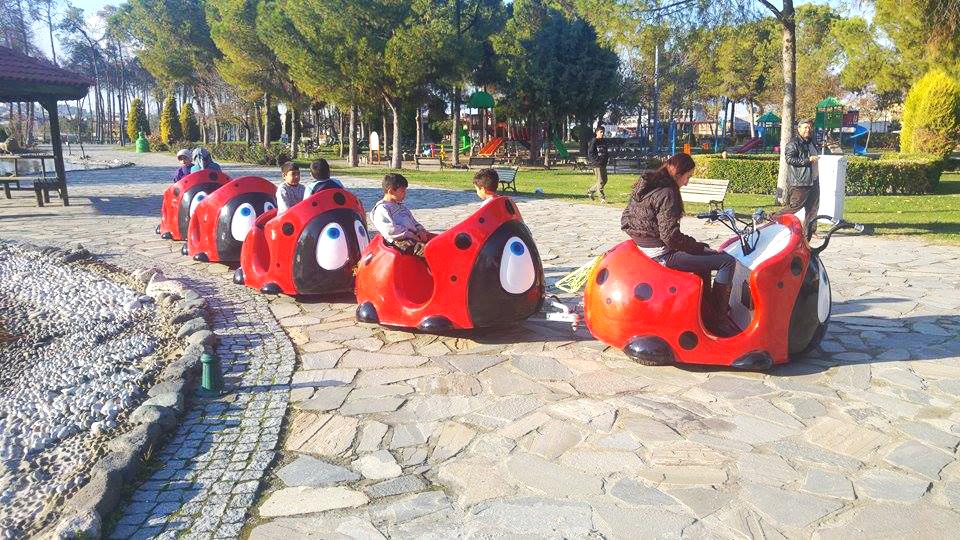 ludybug Ludybug ladybug train manufacturer
